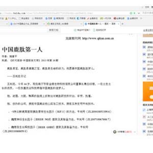 《时代报告·中国的告文学》